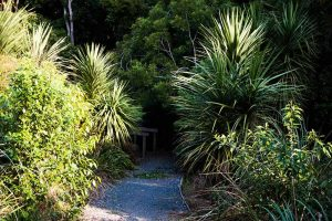 Pathway at Seeley's Gully